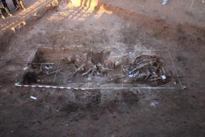 Recuperadas otras 26 víctimas en el Monte de Estépar